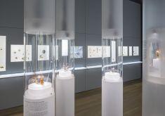 Taschenuhrensammlung Schwank in der Uhrensammlung Kellenberger in Winterthur, Fotografie Michael Lio